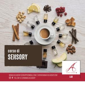 Rosito 29 giugno 2020 sensory per sito web